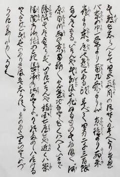 sonokazu2_1.jpg