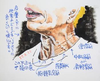 tokoronodo1_1.jpg